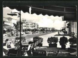 Cartolina Lido Di Camaiore, Viale Lungomare - Andere Steden