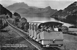 Treib Seelisberg Bahn Blick Gegen Bürgenstock Und Pilatus - Animée - UR Uri