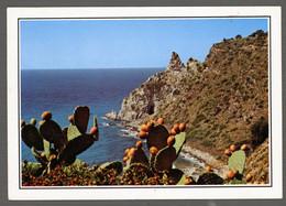 °°° Cartolina - Dintorni Di Tropea Capo Vaticano Ricadi Viaggiata (l) °°° - Cosenza