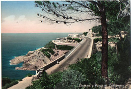 Livorno - Ponte Di Calignaia - Livorno