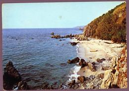 °°° Cartolina - Dintorni Di Tropea Marina Della Grazia Viaggiata (l) °°° - Cosenza
