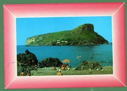°°° Cartolina - Riviera Dei Cedri Praia A Mare Isola Di Dino Viaggiata (l) °°° - Cosenza