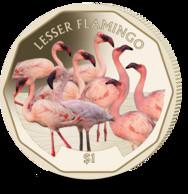 British Virgin Islands Coin 2019 - Lesser Flamingo - British Virgin Islands