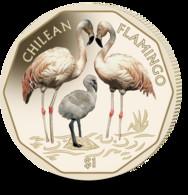 British Virgin Islands Coin 2019 - Chilean Flamingo - British Virgin Islands