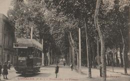 RIVESALTES  Promenade Des Platanes - Arrivée Des Tramways - Rivesaltes