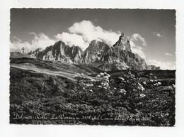 Dolomiti - Rolle (Trento) - La Vezzana Ed Il Cimon Della Pala - Viaggiata Nel 1960 - (FDC27999) - Trento