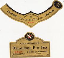 Etiquette Champagne DELAUNOIS P. & FILS à Rilly-la-Montagne / BRUT BLANC DE BLANCS - Champagne