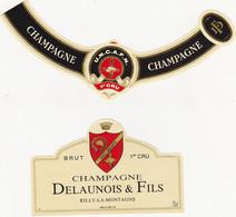 Etiquette Champagne DELAUNOIS P. & FILS à Rilly-la-Montagne / BRUT 1er CRU / UNC-UNCAFN - Champagne