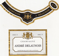 Etiquette Champagne André DELAUNOIS à RILLY-LA-MONTAGNE / BRUT - Champagne