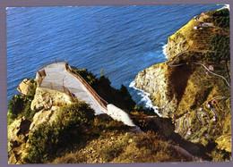 °°° Cartolina - Palmi S. Elia Balcone Sul Tirreno Viaggiata (l) °°° - Reggio Calabria