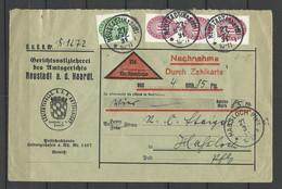 Germany Deutsches Reich 1931 Nachnahmebrief Mit Dienstmarken Michel 115 & 117 O Neustadt Nach Hassloch Pfalz - Officials