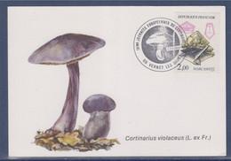 IVè Journées Européennes Du Cortinaire Vernet Les Bains 10.10.86 Sur Carte Postale N°2429 Marcassite - Gedenkstempels