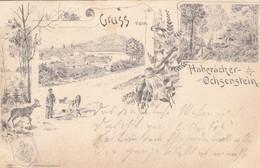 REINHARDSMUNSTER - SAVERNE - BAS-RHIN -  (67) - RARE LITHOGRAPHIE 1897... - Saverne