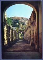 °°° Cartolina - Soriano Calabro Santuario Di S. Domenico Ruderi Antico Chiostro Con Panorama Di Sorian Viaggiata (l) °°° - Catanzaro