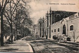 34 / MONTPELLIER / BOULEVARD DE L ESPLANADE / TRES JOLIE CARTE - Montpellier