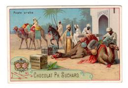 Chromo Suchard, 39 / D, Poste Arabe, Orient, Dromadaires, Beduines (?) - Suchard