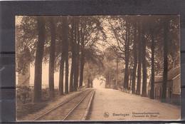 Beeringen  Diesterschesteenweg / ( + Fr. ) - Beringen