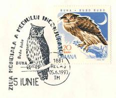 617  Hibou Grand-duc: Oblit. Temp. 1993, Timbre 100% Concordante - Eurasian Eagle-owl  Pictorial Cancel From Romania - Owls