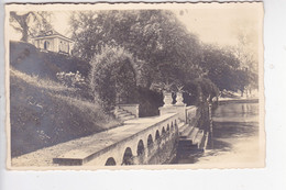 LUZ113   --  KASTANIENBAUM  BEI LUZERN  --   OTTO FISCHER  --  TELEPHON No 22    --  1927 - LU Lucerne
