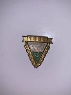 STEIERMARK ZSV 1980 - Badge - Ohne Zuordnung