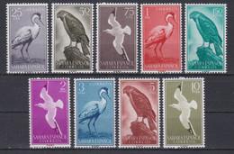 SAHARA 1959 - Aves Serie Nueva Sin Fijasellos Edifil Nº 160/168 - MNH - Sahara Spagnolo