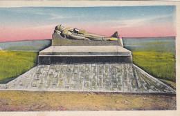 AK Douaumont - Le Soldat Du Droite  (54159) - Verdun