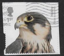 GROSSBRITANNIEN GRANDE BRETAGNE GB  2019 BIRDS OF PREY : HOBBY S/A 1st USED SG 4211 MI 4380 YT 4792 SC 3841b - Gebruikt
