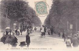 VILSEPT20- CHANTILLY DANS L'OISE  AVENUE DE LA GARE UN JOUR DE COURSES    CARTE  CIRCULEE - Chantilly