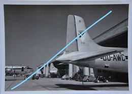 Photo SABENA Melsbroek Zaventem Aéroport Aérodrome Vliegveld Circa 1950 DOUGLAS DC 6 ? Avion Aviation Vliegtuig - Aviation