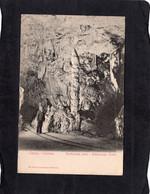 98417    Slovenia,  Cipresse,  Adelsberger Grotte,  NV - Slovenië