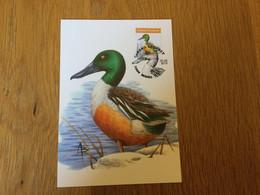 Belgique : N°4737 Oiseau De Buzin Sur CM Buzin - Cartas