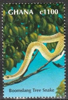 Ghana 2000 - Serpent Des Arbres (Dispholidus Typus) - Serpenti