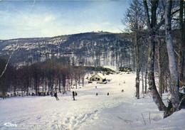 CPSM  Grand Format ST CHELY D'AUBRAC  (Aveyron) Alt 850m Les Pistes De Ski De Brameloup RV - Sonstige Gemeinden