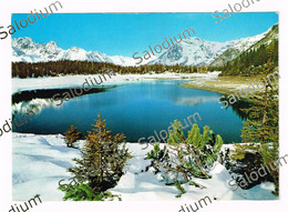 LAGO PALU - Al Retro Timbro Funivia Al Bernina - Valmalenco - Valtellina Sondrio - Sondrio