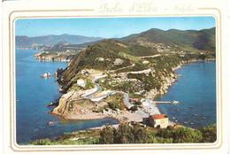 ISOLA D'ELBA ENFOLA - Livorno