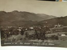 Cartolina  Gavinana Borgo Medievale, Frazione Del Comune Di San Marcello Piteglio  Prov Pistoia 1964 Panorama Abetone - Pistoia