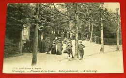 SCHERPENHEUVEL - MONTAIGU  -    Kruis Weg  -  Chemin De La Croix  -  1907 - Scherpenheuvel-Zichem