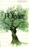 L'olivier De Collectif (1995) - Natur