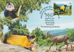 INDIA 2020 MaxiCard UNESCO World Heritage Sites, Monkey Deer Santuary 3/5 Maxi Cards ( (**) Inde Indien - Osos