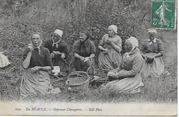28 - EN BEAUCE - AGRICULTURE - Déjeuner Champêtre De Femmes - Très Belle CPA édit. Neurdein Très Bon état Postée En 1910 - Non Classés
