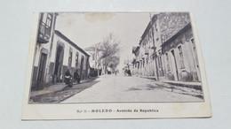 RARE ANTIQUE POSTCARD PORTUGAL MOLEDO - AVENIDA DA REPUBLICA UNUSED - Viana Do Castelo