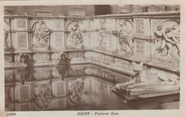 SIENA-FONTANA GAIA-CARTOLINA VERA FOTOGRAFIA-NON VIAGGIATA 1920-1930 - Siena