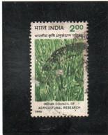 INDE   République  1990  Y.T. 1059  Oblitéré - Used Stamps
