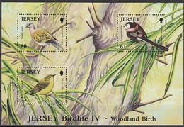 Jersey  2010 Yvertn° Bloc 101  *** MNH Cote 9 € Faune Oiseaux Vogels Birds - Jersey