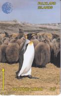 FALKLAND INSELN - Falkland Islands