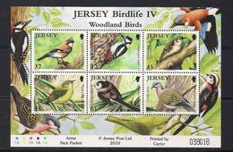 Jersey  2010 Yvertn° Bloc 100  *** MNH Cote 14 € Faune Oiseaux Vogels Birds - Jersey