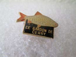 PIN'S   ANIMAUX   POISSON   LE GARDON DE CERGY - Animali