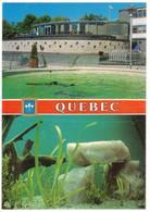 CANADA QUÉBEC : L'AQUARIUM DE QUÉBEC - Québec - La Cité