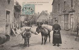 L Aveyron Pittoresque ('Retour Du Marché ) Anes Avec Femme - Unclassified