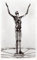~~ Paris - Exposition Internationale , L' Homme De Verre - Exhibitions